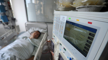 Nem tudni, hányan halnak meg kórházi fertőzésekben