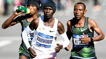 A nyúlmentes NY Marathon minden képzeletet felülmúlt