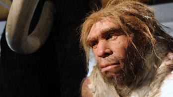 Peckes, mint egy neandervölgyi