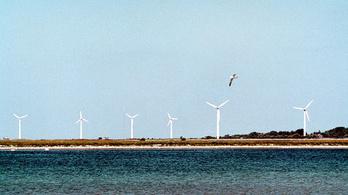A szélerőművek az új csúcsragadozók