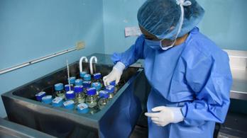 Kórházi fertőzések jelentik a legnagyobb egészségügyi fenyegetést