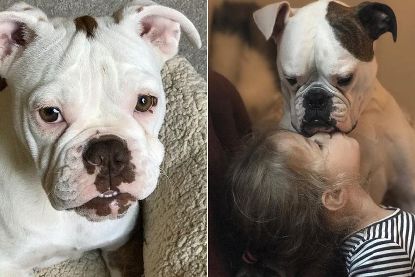 A 4 éves kislány összetört édesapja halála után: egy mentett kutya segített feldolgozni a gyászt
