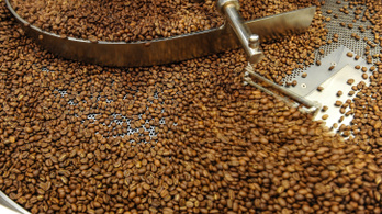 A kávé véd az Alzheimertől és a Parkinsontól