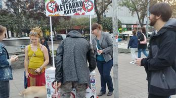 Nyert a Kutya Párt, továbbra sem kérhetnek pénzt az önkormányzatok a közterületi aláírásgyűjtésért