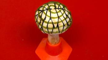 Áramot termelő gombát hoztak létre