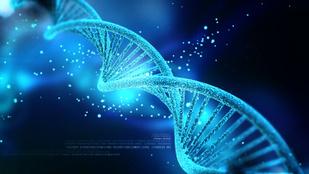 Ilyen az, amikor egy 99.29 százalékos DNS-teszt hibás eredményt hoz