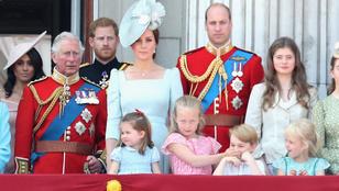 Egészen meglepő, hogy ki a brit királyi család legnépszerűbb tagja