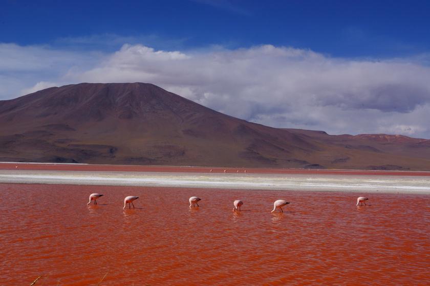 10 megdöbbentő színű tó a világon: itt nem szívesen mártóznánk meg