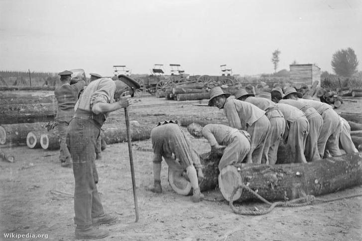 Chinese Labor Corps emberei és angol katonák dolgoznak Caestre-ben 1917. július 14-én