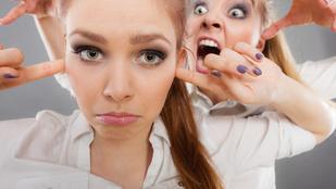 Szitkozódás, személyeskedés — miért ragadnak egyesek az ellenvetés-hierarchia alján?