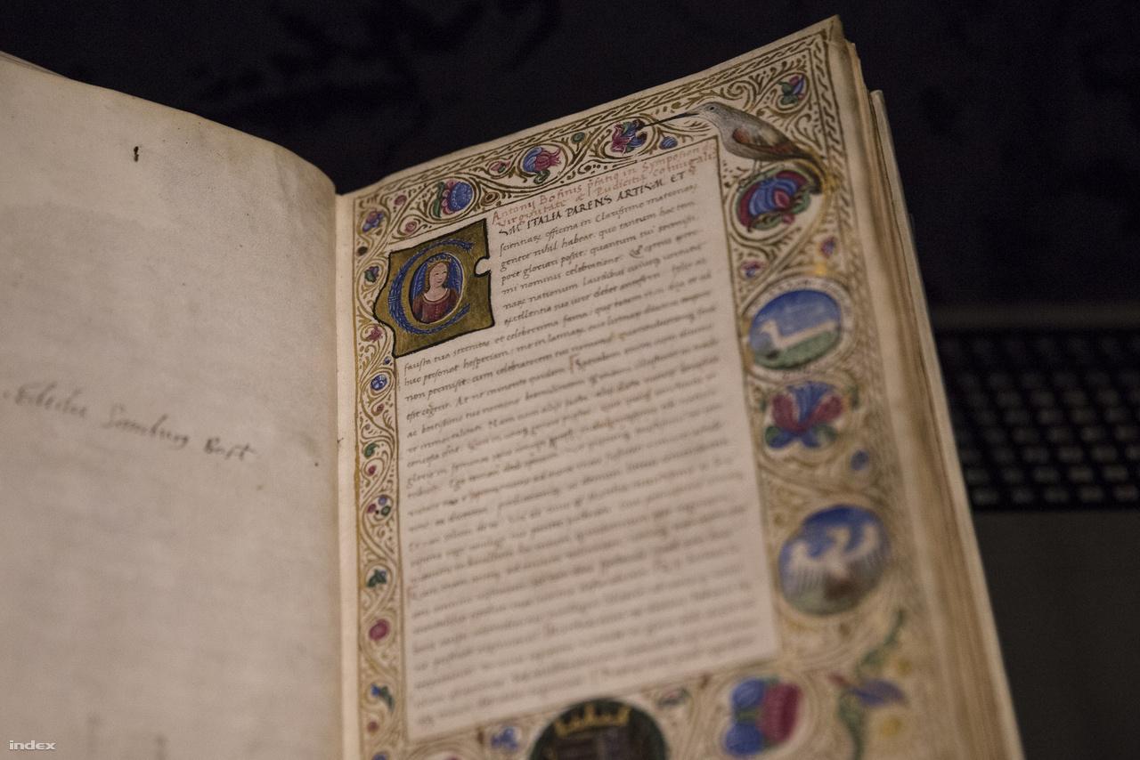 Antonio Bonfini: Symposion –beszélgetés a szüzességről és a házasélet tisztaságáról (Itália, 1485 körül). Ez a kódex már készen került Mátyás könyvtárába, egész pontosan maga Bonfini ajándékozta Beatrix királynénak. A C-iniciáléban a királyné látható, míg a díszes keret jobb szélén alul főnixmadár, a feltámadás és tisztaság jelképe, középen hermelin, a szüzesség jelképe, fölül pedig egy méhekkel táplálkozó gyurgyalag – mivel a méhek is a szűzi tisztaság jelképeinek számítotak, így a gyurgyalag a gyermektelen, királyi utódot nem szülő Beatrix ellenlábasainak lehet a szimbóluma.