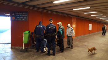 Az EMMI szerint sikeres a hajléktalanrendelet