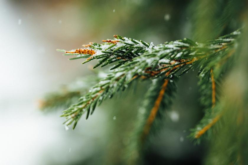 Napokon belül érkezhet az első hó: bekeményít az időjárás a hétvégén