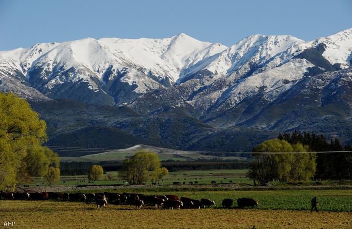 Új-Zéland déli szigetének hegyei
