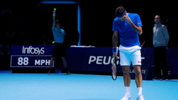 Egy labdaszedő segített legyőzni Federert a vb-elődöntőben