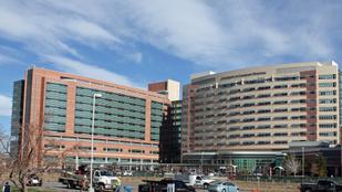 Tévedésből kivették egy egészséges nő mindkét veséjét Coloradóban
