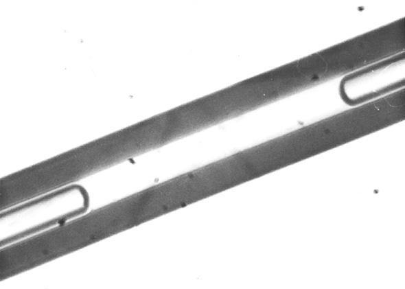 Egy vékony kémcső két végén látható polivíz