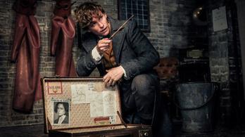 Harry Potter rajongói összetehetik a két kezüket ezért a filmért