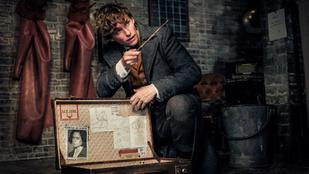 Harry Potter rajongói összetehetik a két kezüket ezért a filmért - Kritika a Legendás lények – Grindelwald bűntettei című filmről