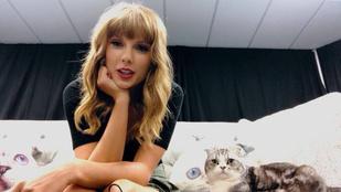 Taylor Swift állítólag néha egy nagy sötét ládában bujkál a fotósok elől