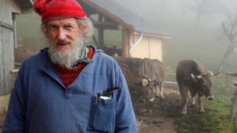Megér-e egy szarvasmarha méltósága 190 svájci franknyi közpénzt?