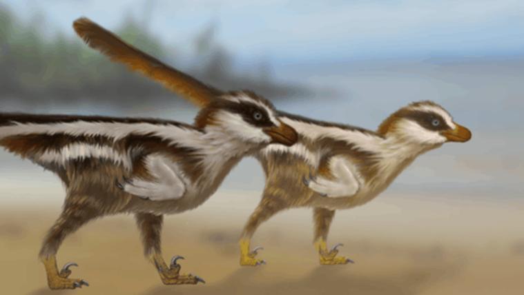 Megtalálták a világ legkisebb dinoszaurusz-lábnyomait