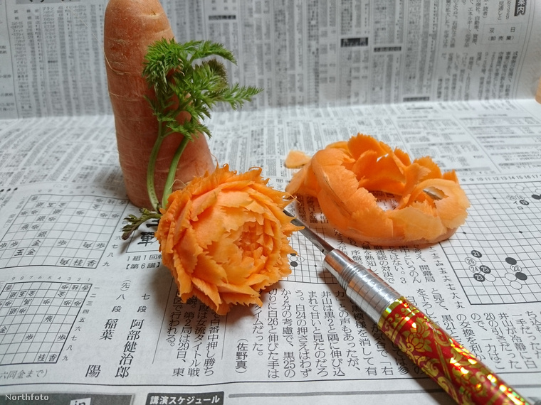Vagy ezt csodálatos műalkotást enni köretnek?