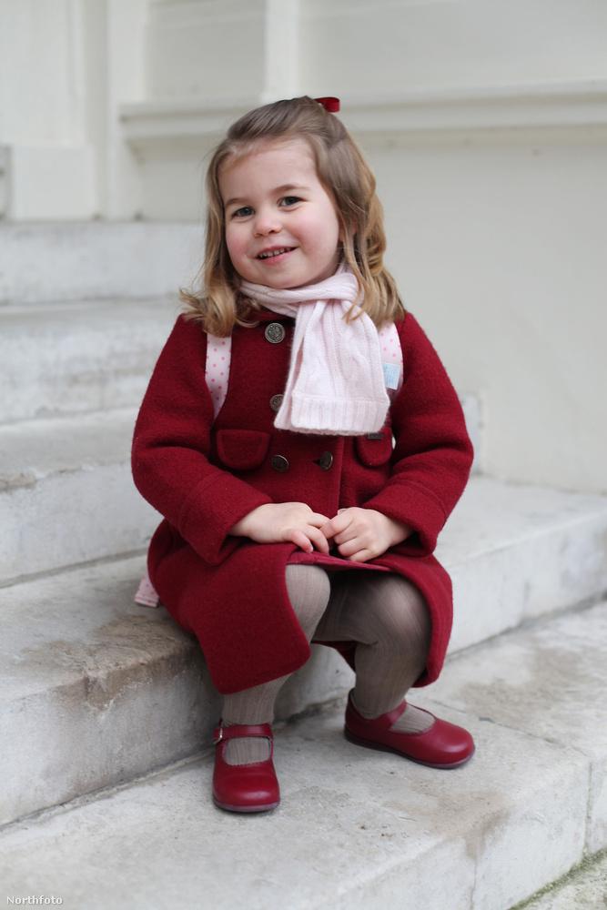 Az év rögtön Sarolta hercegnővel indult, aki gyakorlatilag egyszemélyes sztárja lett volna a 2018-as évnek, ha nem épp idén házasodik be a családba Meghan hercegnő