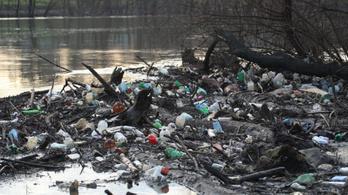 A Tiszában több a műanyag, mint a Dunában