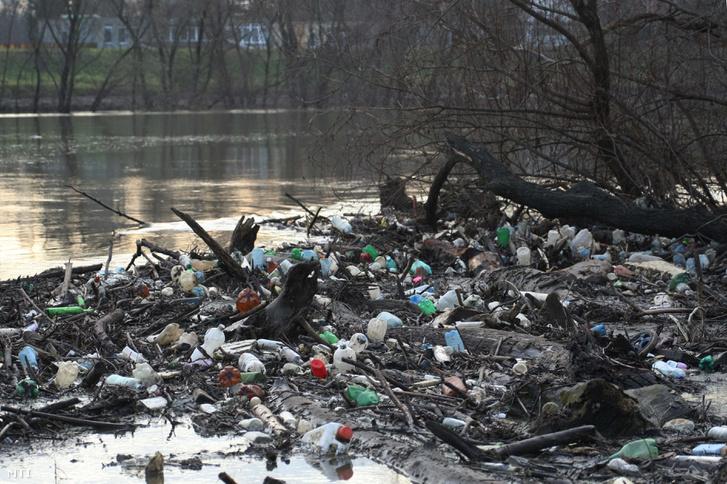 A hullámtéri fákon és bokrokon fennakadt kommunális hulladék látható a Tiszán Szolnoknál 2010. december 7-én.