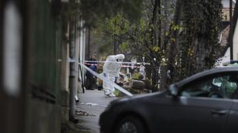 Kocsival menekült a békásmegyeri nő bódult gyilkosa