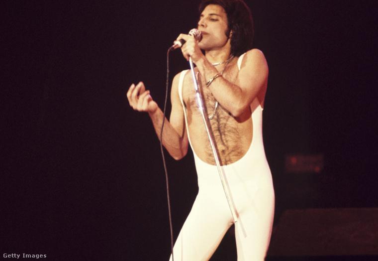 1. Macskanadrágos Freddie