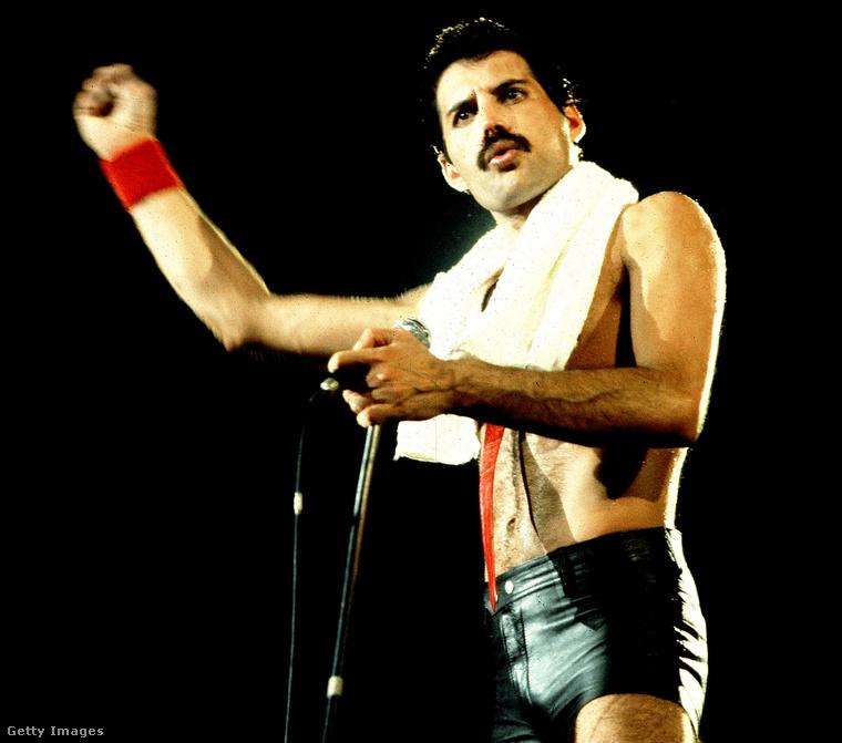 3. Buzis Freddie