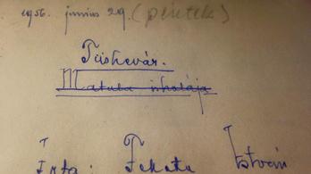 Tízszeres áron ment el a Tüskevár eredeti kézirata