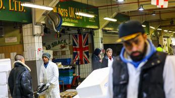 Egyszerre 11 hónapig maradhatnának a brexit után a képzetlen munkavállalók Angliában