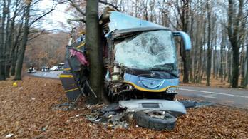 Szándékosan hajtott fának a busz sofőrje Kékestetőnél