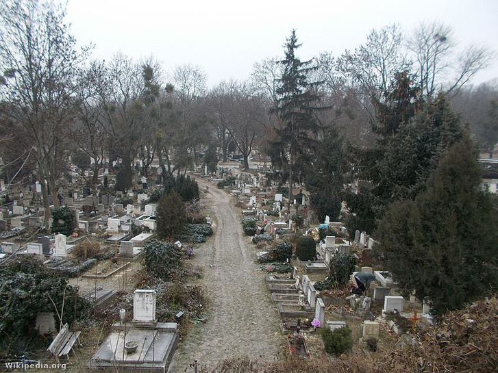 A Farkasréti temető egy részlete