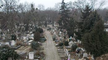 A Hermina Bau újra sírhelyet árul