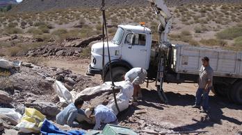 Óriás dinoszauruszt tártak fel Brazíliában