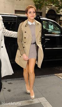 Emma Watson 2010 novemberében