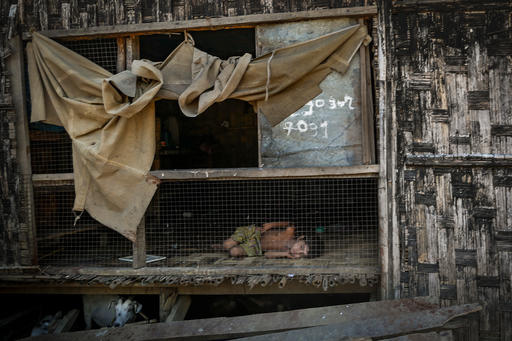 Mianmarban az internálótáborokban összetákolt viskókban élnek a családok, a gyerekek táplálását és oktatását a nemzetközi szervezetek próbálják biztosítani.
