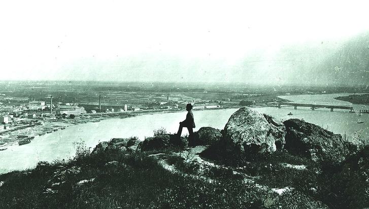 Kilátás a Gellért-hegyről (1875 körül). Még nem készült el a Kopaszi-gát, a Duna eredeti szélességében folyik.