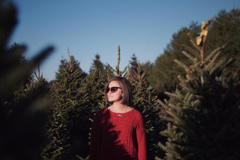 karácsony fenyő fenyők