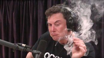 NASA: Elon Musk többé nem füvezik nyilvánosan