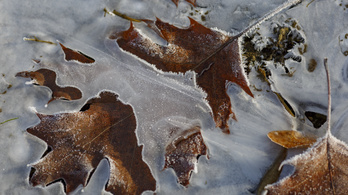 Havazással és mínusz 15-16 fokokkal kezdődött a tél