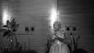 Rég elveszett Honthy Hanna felvételt tett közzé a filmalap
