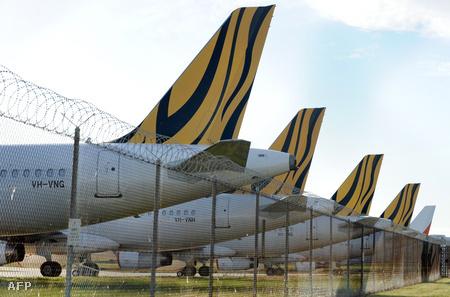 Nem repülhetnek (Fotó: William West)