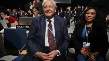 Attenborough: Világ vezetői, vezetnetek kell!
