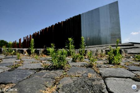 Méltatlan állapotok uralkodnak az Ötvenhatosok terén felállított emlékmű környékén