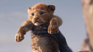 Magyarul is megszólal az új oroszlánkirály